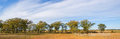 minnesota, national wildlife refuge, sherburne,, trees, prairie, sky
