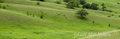 minnesota, prairie, rolling prairie, the nature conservancy