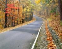 Autumn Byway