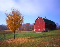 Barn, st. croix, minnesota, autumn