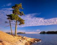 National Park,minnesota,voyageurs