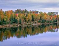 autumn, chippewa national forest
