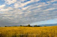 minnesota, state park, prairie, minnesota river