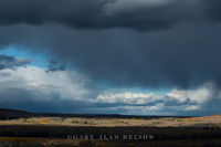 Aspens,Storm Clouds,Superior National Forest,autumn,clouds,lake superior,rain,storms