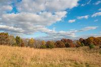Carlos Avery,autumn,clouds,minnesota,prairie,prairie grass,wildlife management area