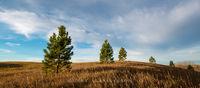 pattern,patterns,rolling hills,silhouette,sky