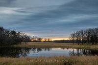 douglas county,minnesota,prairie,prairie pothole,reflections,wetland