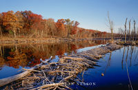 minnesota, wisconsin, st. croix, national scenic river