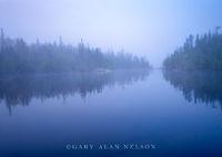 boundary waters, canoe, minnesota, lake, fog, pines, wilderness