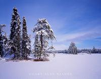 boundary waters,minnesota,winter