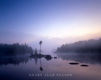 minnesota, wilderness, lake, boundary waters, wilderness