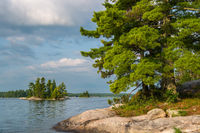 minnesota, voyageurs national park, islands, white pines