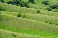 minnesota, prairie, hole in the mountain, nature conservancy, the nature conservancy