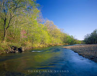 Ozark National Scenic Riverway, Missouri, river, current river