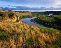 Theodore Roosevelt National Park, North Dakota, little missouri river, little bluestem