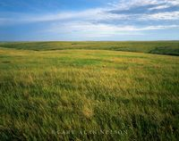 Fort Pierre National Grasslands, South Dakota, prairie