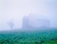 Monroe County, Wisconsin, fog, barn