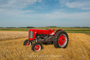 Massey-Ferguson,antique tractor