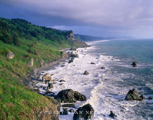 Redwoor National Park, California, pacific coast
