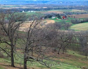 Farm in the Mississippi River Valley