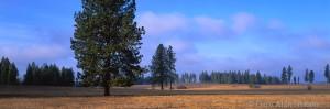 Weippe Prairie