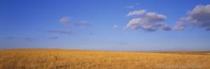 prairie, clouds, kansas