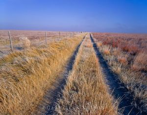 Logan County, Kansas,prairie, path