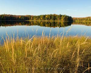 lake, sylvania, grasses