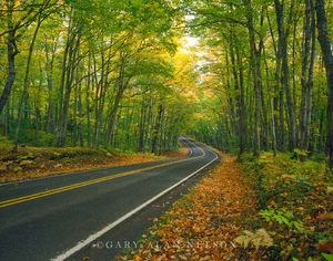 Scenic Highway 41