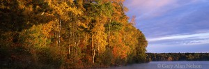 chippewa national forest, minnesota, autumn, lake