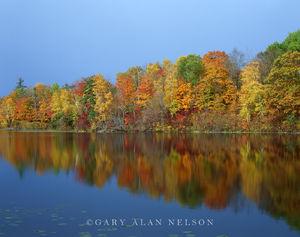 boundary waters canoe area,lake,minnesota, voyageurs national park