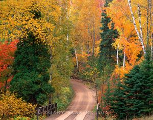 Superior national forest, minnesota, bridge