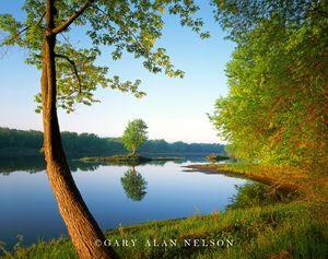 maple, island, state park, st. croix river, minnesota, national scenic river
