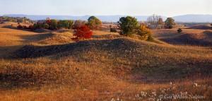 Weaver Dunes Scientific and Natural Area, Minnesota, sand hills