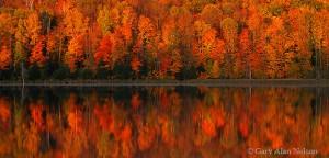 Chippewa National Forest, Minnesota, long lake