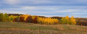 minnesota, prairie, state park, autumn