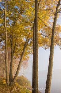 St. croix river, minnesota, wisconsin, fog, interstate state park