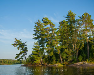 National Park,Voyageurs National Park,lake,minnesota,pines,voyageurs