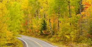 Scenic Highway 38