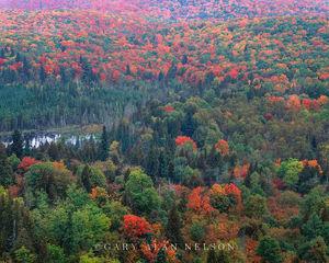 Sawtooth Mountains in Autumn