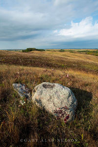 Rolling glacial moraine and glacial erratics on the prairie