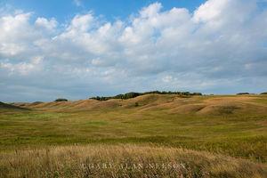 minnesota, prairie, moraine, glacial, prairie grasses