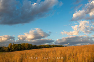 Prairie and Clouds
