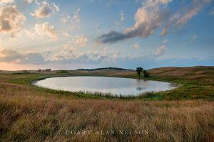 minnesota, prairie, moraine, glacial, prairie grasses, kettle lake