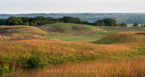 Glacial moraine and prairie grasses
