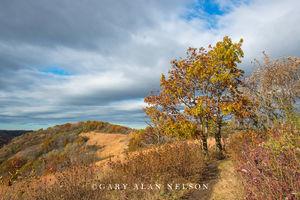 Hiking trail along goat prairie