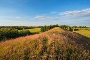 minnesota, prairie, esker, glacial, prairie grasses