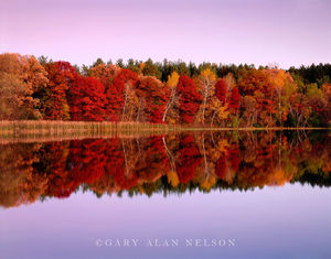 minnesota, twilight, autumn, reflections, pond