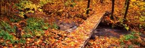 superior hiking trail, minnesota,lake superior, tettegouche