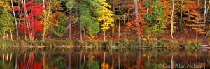 loon lake, minnesota, savannah portage, state park, reflections